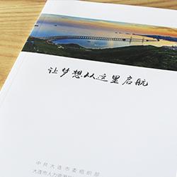 大连市委宣传册设计